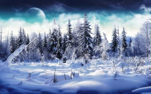 Обои зима сказочная зимняя природа