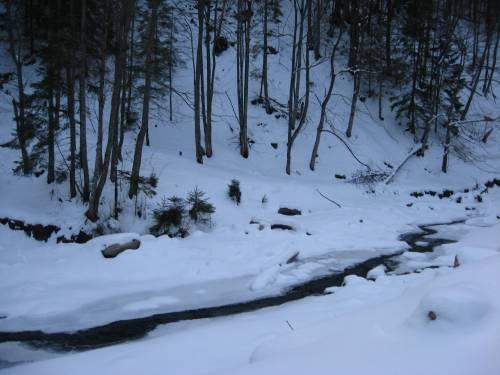 Зима в карпатах