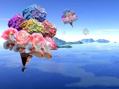 Для рабочего стола цветы на фоне неба